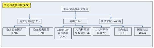 医院矩阵型组织结构图